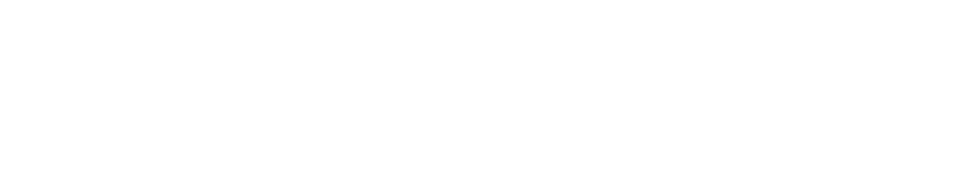 netevolution-logo